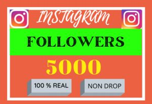 i will do super first instagram grow and 5000 followers ,100% reall and organic