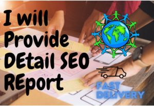 I will provide detail SEO report for your websites