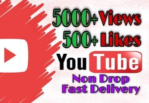 I will provide 5000+ Views and 500+ Likes on YouTube!! Fast and HQ!!