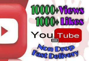I will provide 10000+ Views and 1000+ Likes on YouTube!! Fast and HQ!!
