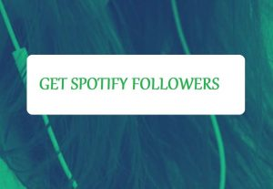 Get 1500+ Spotify Artist or playlist Followers,High Quality