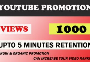 Youtube upto 5 minutes high retention 1000 views.