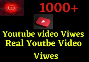 i wil give 1000+ youtube video views 100% grented organic