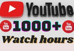 I will add 1000+ YouTube watch hours ,all watch hours are 100% real and organic.