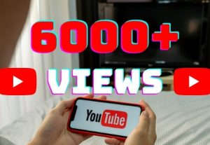 I will add 6000+ YouTube views ,all views are 100% real and organic.