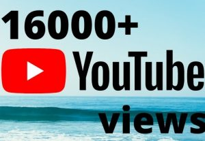 I will add 16000+ YouTube views ,all views are 100% real and organic.