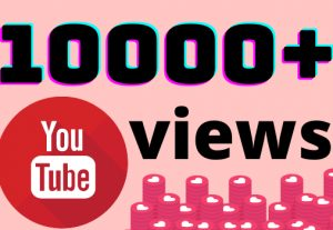 I will add 10000+ YouTube views ,all views are 100% real and organic.