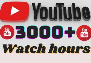 I will add 3000+ YouTube watch hours ,all watch hours are 100% real and organic.