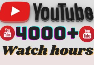 I will add 4000+ YouTube watch hours ,all watch hours are 100% real and organic.