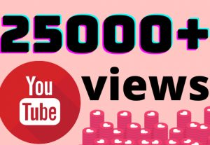 I will add 25000+ YouTube views ,all views are 100% real and organic.