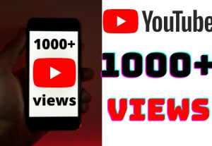 I will add 1000+ YouTube views ,all views are 100% real and organic.