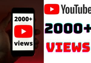 I will add 2000+ YouTube views ,all views are 100% real and organic.