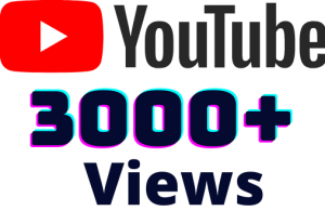 I will add 3000+ YouTube views ,all views are 100% real and organic.