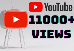 I will add 11000+ YouTube views ,all views are 100% real and organic.
