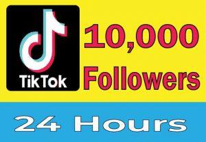Add 1000+ TikTok Organic Followers, Real Active User, High Quality, Non drop, Lifetime User Guaranteed