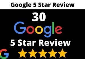I will provide 30 permanent 5 star google review