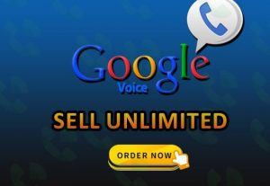I will give you 05 USA Google Voice