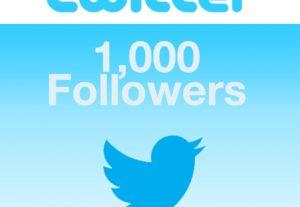 i send you 1000+ twitter followers