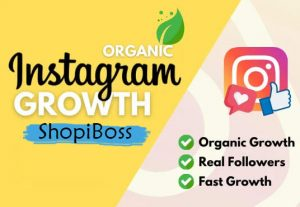 I will promote and grow your instagram page organically