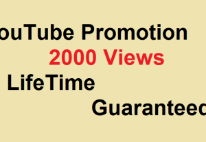 YouTube 2000 Video Views Promotion And Give You