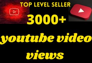 Get permanet 3000+ youtube video views grented organic non drop permanent