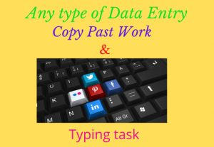 I well do any type of Data Entry, Copy Paste and Typing task