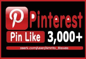 Add 3,000+ Pinterest Organic And Real Pin Likes, Non-Dropped and Lifetime guaranteed.