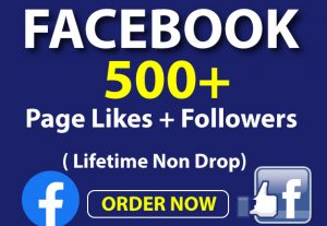 Real 500+ Facebook Page Likes and Followers Lifetime Non Drop.