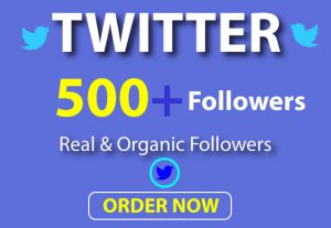 Get 500+ Organic, High Quality and Real Twitter Followers