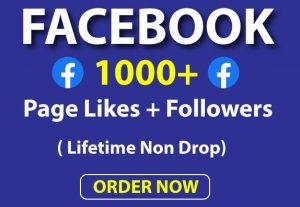 Get Real 1000+ Facebook Page Likes and Followers Lifetime Non Drop.