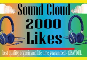 i will do sound cloud 2000 organic likes. non drop high  quality and life time guarantee.