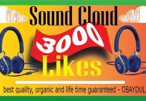 i will do soundcloud 3000 likes. high quality,non drop 100% organic and life time permanent.