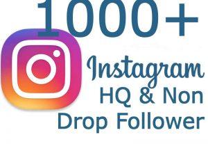 i will Add 1000+ HQ & Non Drop Instagram Follower