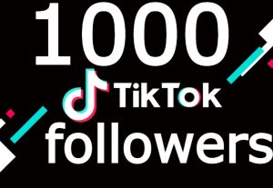 Tiktok 1000+ followers NONE DROP