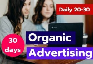 Let's drive super professional niche-targeted organic advertising web traffic for $10