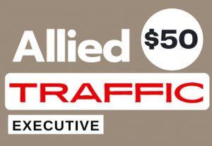 Allied 1,000 real potential niche targeted web traffic service for $60