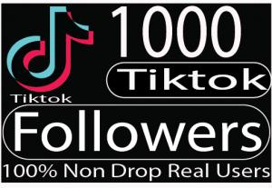I will add fast tik tok 1000+ followers organically Real Non drop live time guaranteed