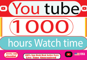 I Will provide your YouTube 1000 hours Watch Time