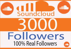 I will Provide 3000+  organic SoundCloud Followers And Real Followers 100% Live time Guaranteed