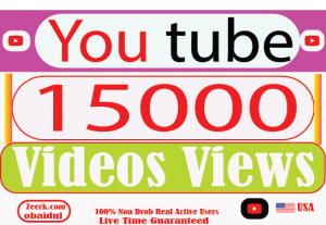 I Will provide your 15000 YouTube Video Views Non Drop 100% Live  Time Guaranteed