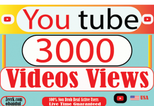 I will provite your 3000+ YouTube video views Non Drop 100% Live Time Guaranteed