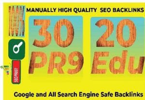 50 Plus High Quality Authority SEO Backlinks for Google Rankings