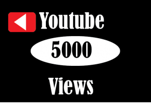 5000+ youtube Views , Non Drop , 100% real and Lifetime permanent