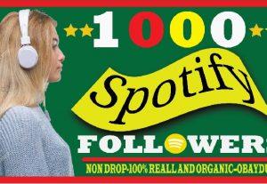 i will do super fast spotify 1000 followers. non drop lifetime guaranteed and organic