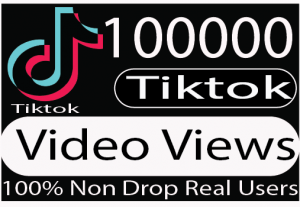 I will provide you with 10,0000  tik tok video views 100% Live Time guaranteed