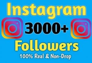 3000 Instagram Followers Give You
