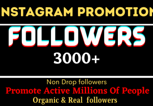 I will Instagram Genuine 3K Followers Provide Non-Drop and revision free for you