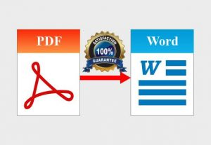I will convert your PDF File into word