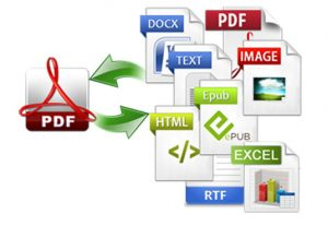 I will do topnotch pdf to word or excel,  file conversion,  typing work.