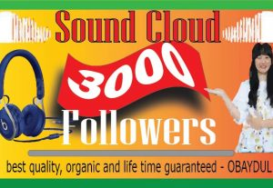 I Will Provide Soundcloud 3000 Followers. Organic High Quality And Life Time Guarantee